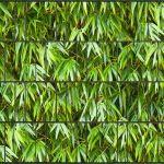 sichtschutzzaun bambus mittel